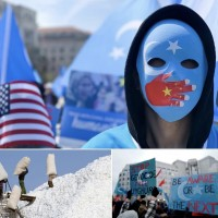 【新疆血汗棉花】 游錫堃臉書籲正視血棉花問題  美國在台協會轉貼支持
