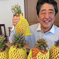 Former Japanese prime minister shows off box of Taiwan pineapples online