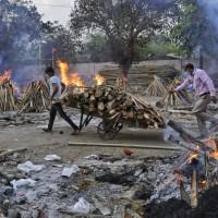 【新冠肺炎】印度突變種可「逃過免疫反應」專家3月示警遭政府漠視