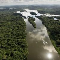 地球之肺不再?碳排放惡化 亞馬遜雨林成淨排放者
