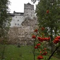 【新冠肺炎】羅馬尼亞出奇招 吸血鬼之家成疫苗接種站