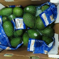 Two batches of avocados imported by Taiwan Costco found to contain excessive cadmium
