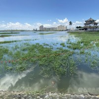 Taiwanese urged to conserve water amid drought