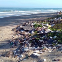 搶救海洋生態!澳洲基金會籲請:銀行和投資者轉投資再生塑料原料公司