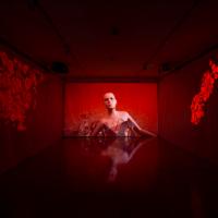 台灣旅法多媒體藝術家鄭淑麗籌備20年 法國尼斯博物館展開「病毒」線上個展