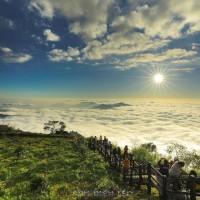 Taiwan's Alishan to livestream its scenery