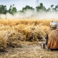 全球食品價格上漲至近10年新高 恐衝擊亞洲市場