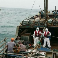 Taiwan Coast Guard detains Chinese crew for illegal fishing