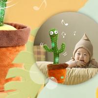 English translation of raunchy Polish rap played by Taiwanese dancing cactus revealed