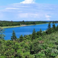 Taiwan's Taitung County to reopen parks, lake after 26 days without new COVID case