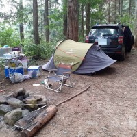 Taiwan's forestry authority vows to punish illegal camping