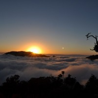 Taiwan reopens multiple forest recreation areas, hiking trails