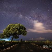 Dazzling photo of 'Nan'ao Takeshi Kaneshiro tree' taken in Taiwan's Yilan County