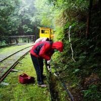 受烟花颱風影響 臺灣森林育樂場域將調整開休園