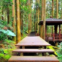 台灣降二級警戒  阿里山國家風景區管理處開放56處景點設施