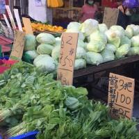 台灣南部豪雨農損菜價漲•台北高麗菜一顆逾百元 農糧署: 今起產地可望搶收增供•加速復耕