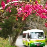 台灣首座高山空氣品質維護區 阿里山將管制一至四期柴油大客車進入