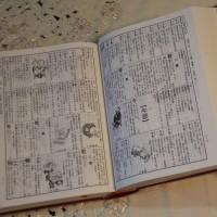 台灣最多人使用的語言 法國巴黎市政府首開「台語課」