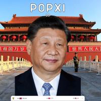 Taiwan Meme takes a pop at China leader Xi Jinping
