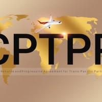 (更新)日本多位大臣挺台入CPTPP 日府發言人:台灣可以關稅區加入 台灣外交部:台灣已做好準備加入