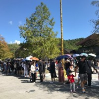 Double Ten Day sees Taipei's zoos and museums full to capacity