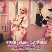 Singer voices support for Namewee, says 'being Taiwanese is a Chinsult'