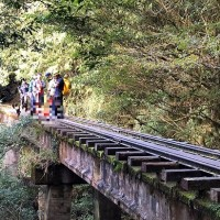 Hiker dies after falling into ravine on Alishan trail