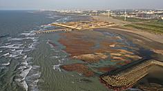 反對桃園觀塘興建三接 「珍愛藻礁公投連署」破二階門檻