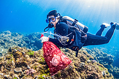 Taiwan's ASE Group establishes diving team to clean up marine debris