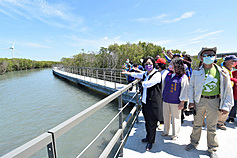 Central Taiwan mangrove walkway opens, aims to become tourist hotspot