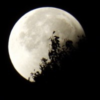 「超級滿月」14號現身 錯過得等到2034年