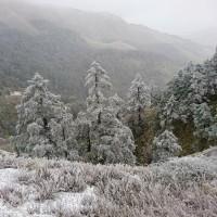 【更新】本周兩波冷空氣南下 週末高山有機會下雪