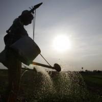 世界水資源日   關懷因缺乏乾淨水而生病失學的兒童