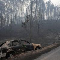史無前例森林大火 葡萄牙逾63人喪生