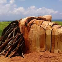 里山里海之美 花蓮東海岸米粑流濕地藝術季開展