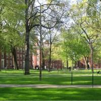白人在哈佛校園將成「弱勢族群」 創校380年來首次