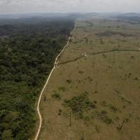 圖利礦業遊說團體? 巴西總統廢除亞馬遜保留區