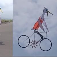 太厲害了!白鷺鷥也會騎腳踏車?!