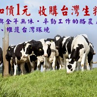 力挺小農!義美宣布2018年起    每公斤再加價1元 收購台灣生乳