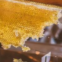 研究:全球75%的蜂蜜含有神經毒殺蟲劑