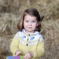 為什麼夏綠蒂小公主的子女將不能繼承皇室頭銜?