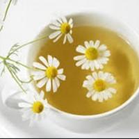 實驗證實菊花茶可治乾眼症 3週效果明顯