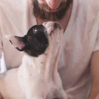 養狗有益身心健康以及降低死亡風險