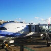 「出了國門才知道」 謝金河:這兩家航空公司最好!