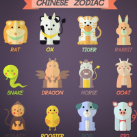 Advice for Chinese zodiac signs in 2018