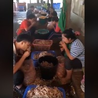 Video shows SE Asian workers deboning chicken feet with their mouths