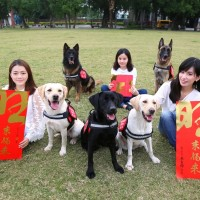 New Taipei City releases Year of the Dog couplets