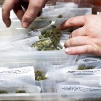 在美國 醫療用大麻合法化如何降低犯罪率