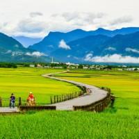 2017年台東縣觀光旅遊人次創新高 伯朗大道最受青睞
