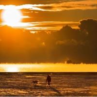 人類導致地球暖化 氣象組織:過去3年史上最熱